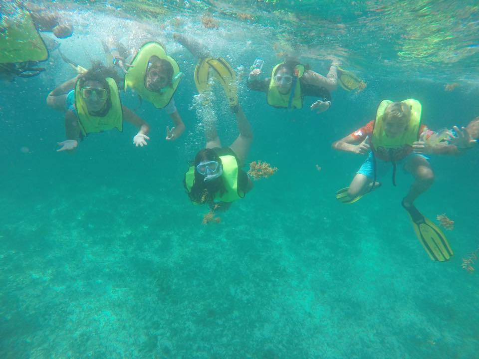 Ymca Junior Marine Biology Summer Camp